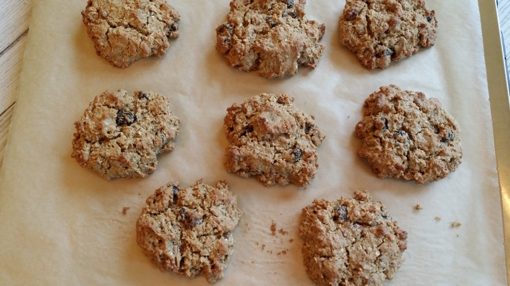 Gluten-Free Oatmeal Cranberry Cookies - 2